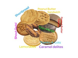 2011Cookie Cluster